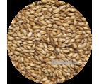 Солод карамельный ячменный Caramel EBC 200 (Viking Malt) 1кг