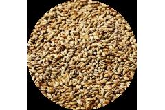 Солод пивоваренный Lager EBC 3 (Swaen)